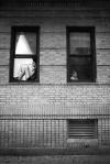 inwood_windowwatchers